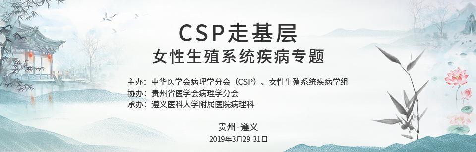 CSP走基层 女性生殖系统疾病专题