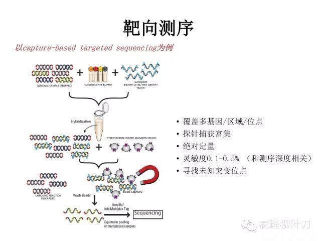 肿瘤精确医疗与分子病理检测