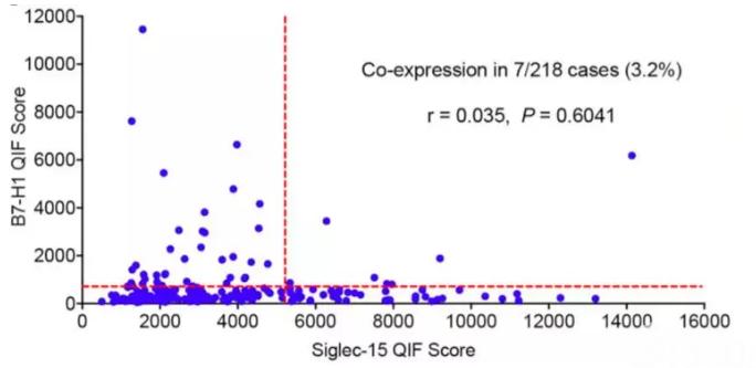 图5:Siglec-15与B7-H1的表达相关性分析