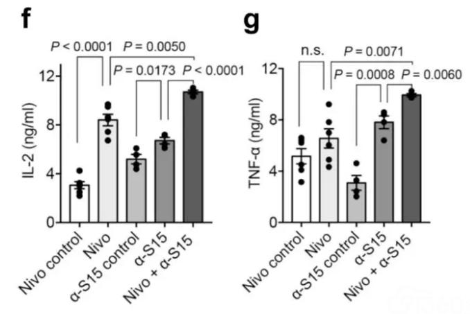 图6:抗CD3和SEB刺激后,α-S15和 Nivolumab对人PBMC分泌IL-2和TNF-α 的影响