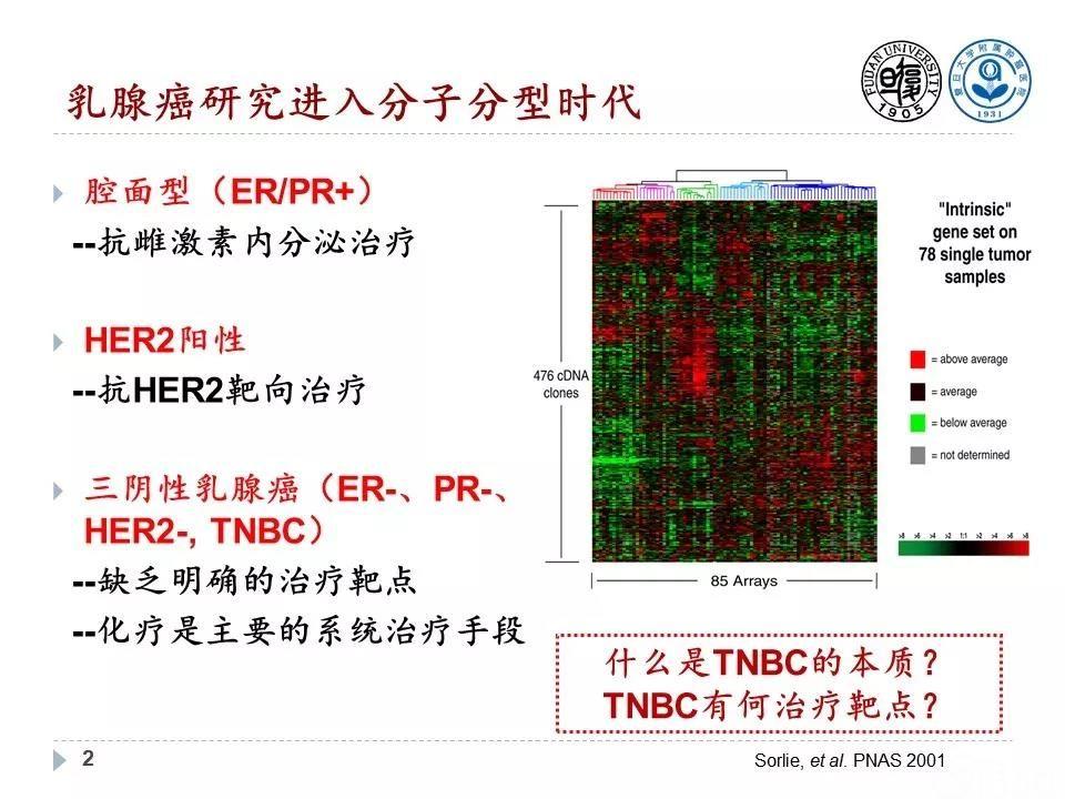三阴性乳腺癌分子分型和精准治疗策略