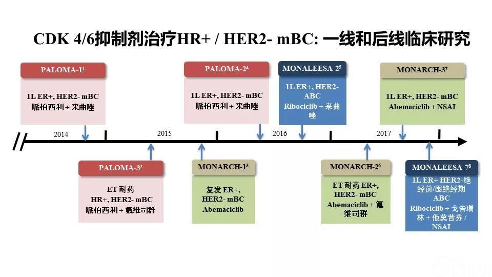 激素受体阳性HER2阴性晚期乳腺癌原发性内分泌耐药的治疗选择