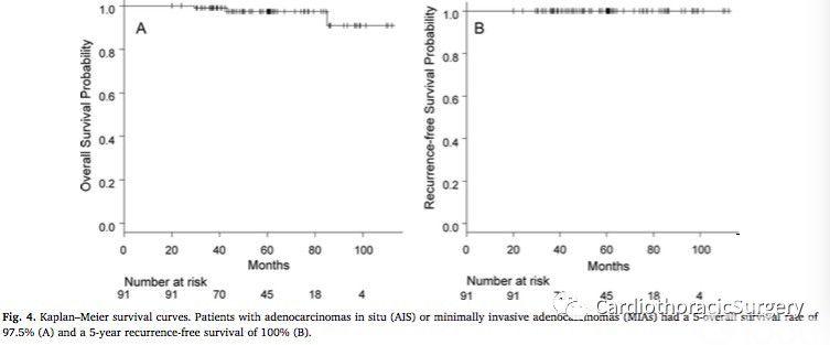 文献速递:肺原位腺癌和微浸润性腺癌的临床病理学特征
