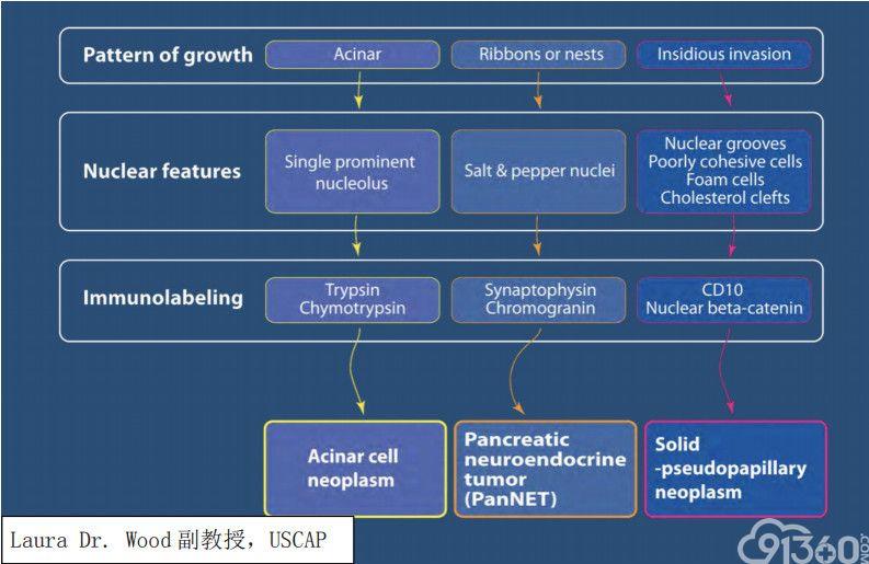 USCAP 2019 消化系统病变主要内容总结