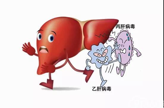 肝癌免疫治疗的现状及进展