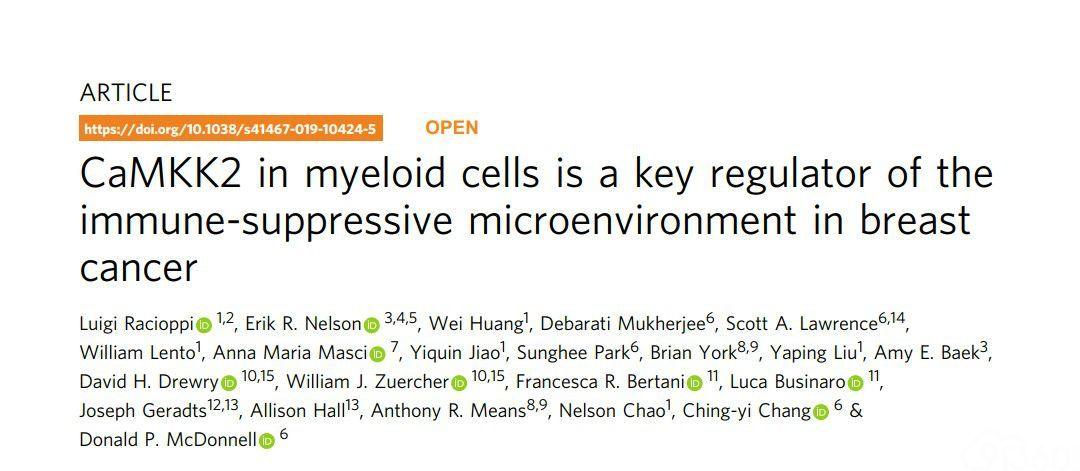 乳腺癌免疫治疗新曙光 : 这种酶可大大增强免疫治疗效果!