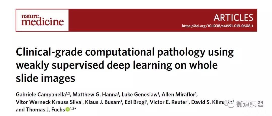 不需要手动标注的临床级别病理AI靠谱吗?