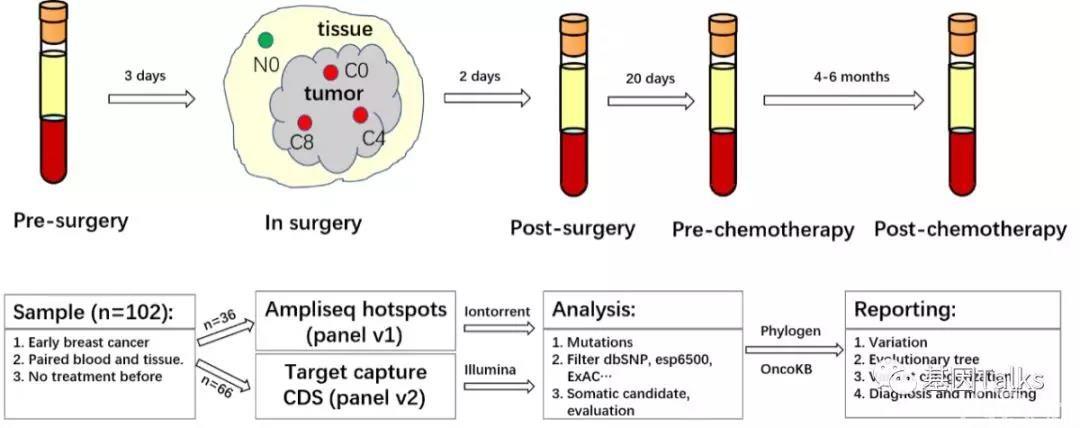 液体活检丨平行分析早期乳腺癌ctDNA vs 组织突变,探究ctDNA临床应用价值