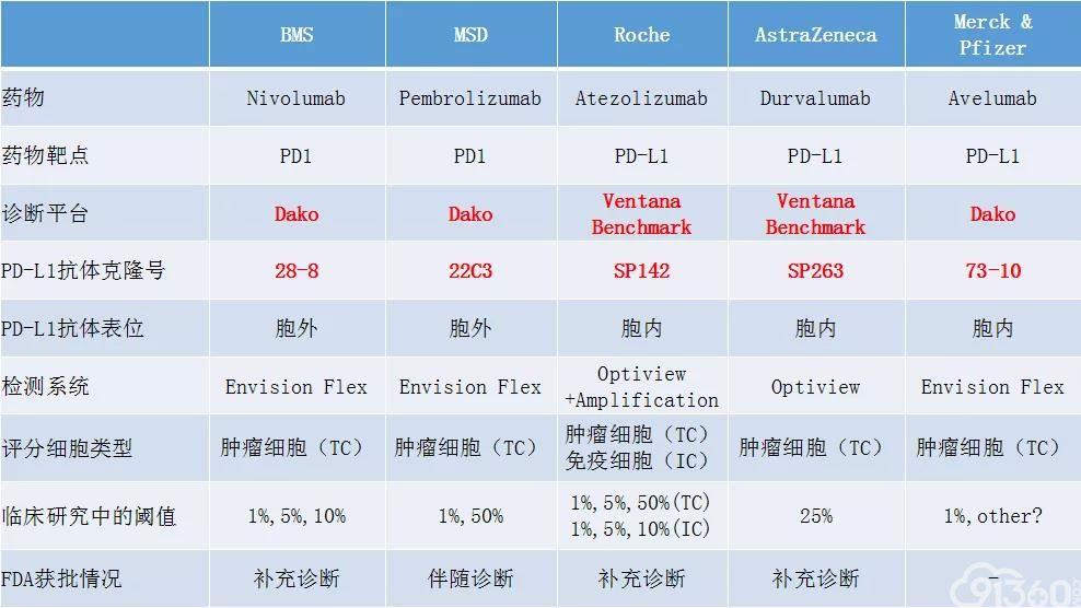 林冬梅教授:PD-L1检测,路漫漫其修远兮