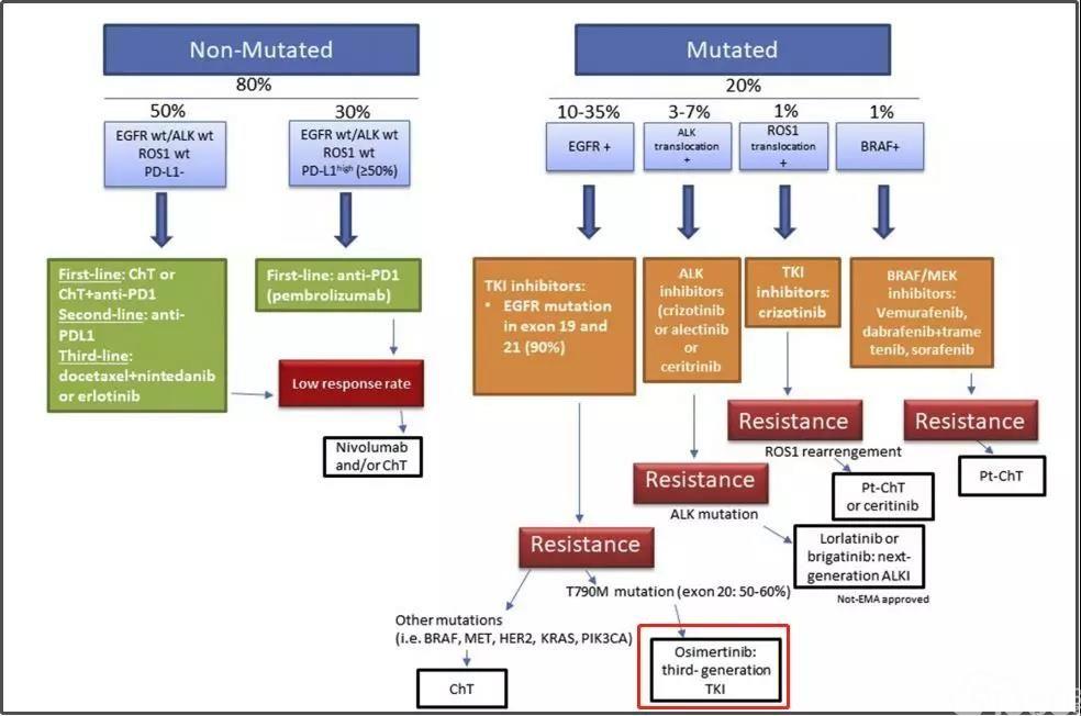 全面分析:肺癌EGFR基因突变如何选择靶向药?