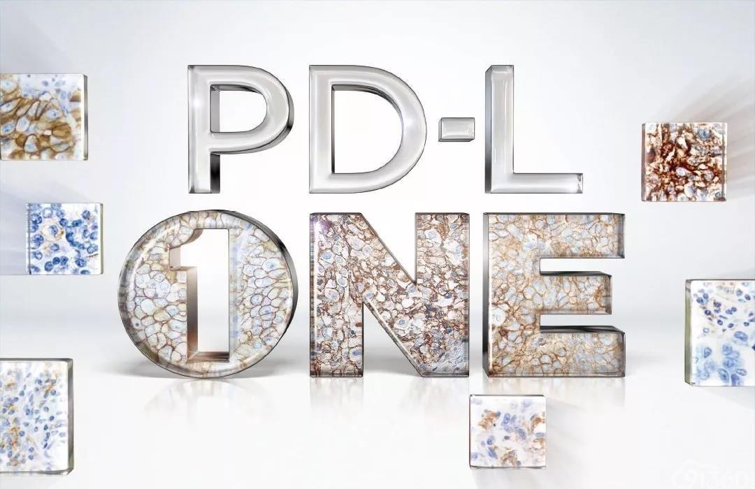 官宣来了!安捷伦获得中国首个 PD-L1 伴随诊断产品批准