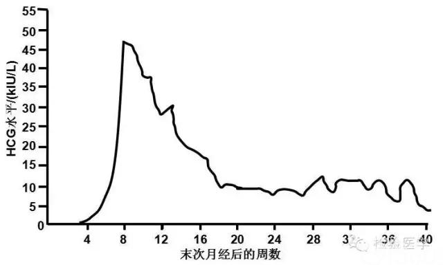 绒毛膜促性腺激素HCG